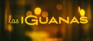 las-iguanas-matt-austin-55